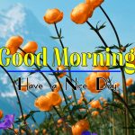Latest Good Morning Photo Free Download