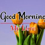 Latest Good Morning Wallpaper Images