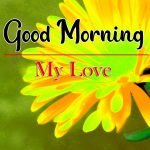 Latest Good Morning wallpaper Pics