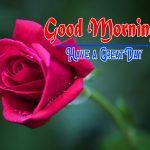 Latest Special Good Morning Photo Free Wallpaper