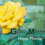 Rose Monday Good Morning Wishes Images Pics Download