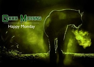 Monday Good Morning Wishes Wallpaper Latest Download
