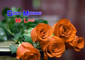 Red Rose Monday Good Morning Wishes Images for Girlfriend