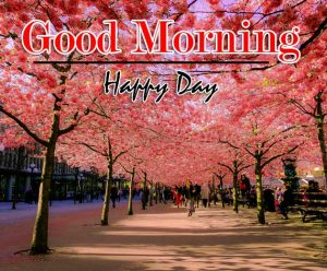 Monday Good Morning Wishes Pics pictures Download