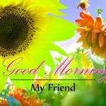 Monday Good Morning Wishes Images Download