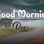 New Best Latest Good Morning Hd Images