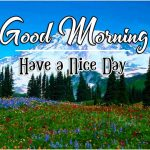 New Good Morning Latest Images