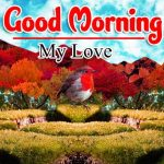 New Good Morning Latest Pictures