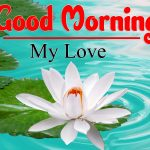 New Good Morning Photo Images Pictures