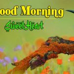 New Latest Good Morning Images