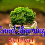 New Latest Good Morning Photo Wallpaper