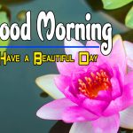 New Special Good Morning Hd Free Download Photo