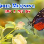 New Special Good Morning hd Free Pics Photo