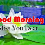 Nice Flower Good Morning wallpaper Pictures