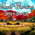 Photo Free Good Morning Images Pics