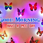 Special Good Morning Free Download Photo Free Hd
