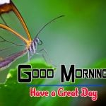 Special Good Morning Free Hd Photo Pics