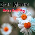 Special Good Morning Free Hd Pics Pictures