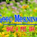 Special Good Morning Free Pics Hd Photo