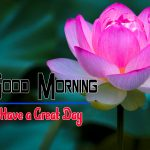 Special Good Morning Hd Free Download Pics