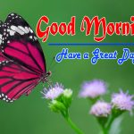 Special Good Morning Hd Free Pics Wallpaper