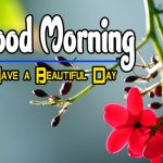 Special Good Morning Hd Pics