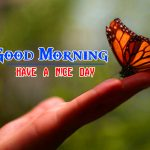Special Good Morning Hd Pictures
