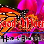 Special Good Morning Hd Wallpaper