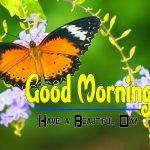 Special Good Morning Hd Wallpaper Pics