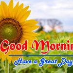 Special Good Morning Images Photo Free Download
