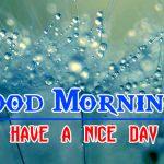 Special Good Morning Pics Hd Free Wallpaper