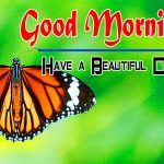 Special Good Morning Pics Photo Hd Download
