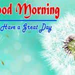 Special Good Morning Wallpaper Photo