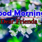 Top Flower Good Morning Photo Images Free