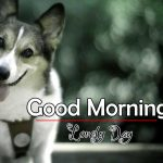 Best Animal Good Morning Pic Download Free
