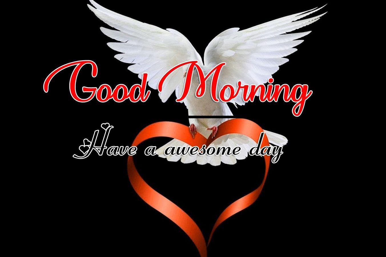 Best Good Morning H Free Images Download
