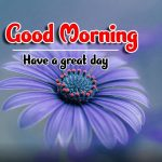 flower Best Good Morning Images photo hd