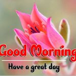 Best Good Morning Images pics hd