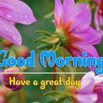 Best Good Morning Wallpaper Download Good Morning Good Morning Wallpaper photo download
