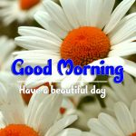 Best Good Morning Wallpaper Download Good Morning Good Morning Wallpaper pictures hd download