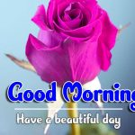 Best Good Morning Wallpaper Download Good Morning Good Morning Wallpaper pictures free hd