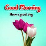 Best Good Morning Wallpaper Download Good Morning Good Morning Wallpaper wallpaper free hd