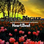 Best Good Night Images pictures free hd