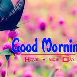 Best Happy Good Morning Images