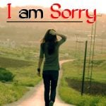Best I Am Sorry Wallpaper Images