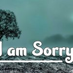 Boys Download I Am Sorry Images