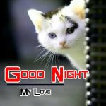 All Cute Good Night Pics Images Download