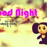 All Cute Good Night Pics Download
