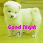 All Cute Good Night Images Pics Download