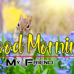 Download Happy Good Morning Pics